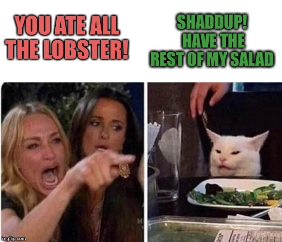 Lady screams at cat | YOU ATE ALL THE LOBSTER! SHADDUP!  HAVE THE REST OF MY SALAD | image tagged in lady screams at cat | made w/ Imgflip meme maker