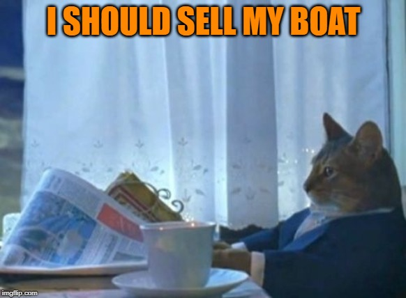 Opposite Week, Oct 3-9, a MrRedRobert77 event! | I SHOULD SELL MY BOAT | image tagged in memes,i should buy a boat cat,opposite week | made w/ Imgflip meme maker