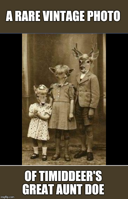 In honor of our Deer Timid's first anniversary of meming. Let's shower her with up votes :) | A RARE VINTAGE PHOTO OF TIMIDDEER'S GREAT AUNT DOE | image tagged in timiddeer | made w/ Imgflip meme maker