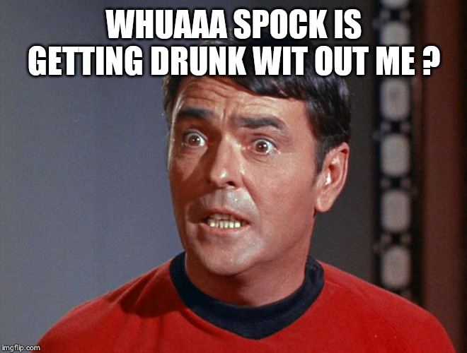WHUAAA SPOCK IS GETTING DRUNK WIT OUT ME ? | image tagged in i'm an engineer not a | made w/ Imgflip meme maker