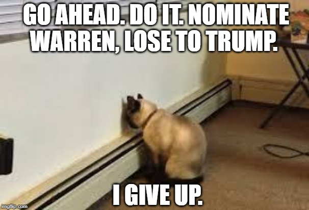 Nominate Warren, lose to Trump | I GIVE UP. GO AHEAD. DO IT. NOMINATE WARREN, LOSE TO TRUMP. | image tagged in give up cat,warren,elizabeth warren,bernie,trump | made w/ Imgflip meme maker