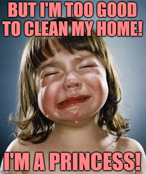 Princess Problems |  BUT I'M TOO GOOD TO CLEAN MY HOME! I'M A PRINCESS! | image tagged in crybaby,princess,housework,housewife,so true memes,cleaning | made w/ Imgflip meme maker