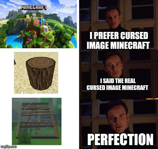 perfection | I PREFER CURSED IMAGE MINECRAFT I SAID THE REAL CURSED IMAGE MINECRAFT PERFECTION | image tagged in perfection,minecraft | made w/ Imgflip meme maker