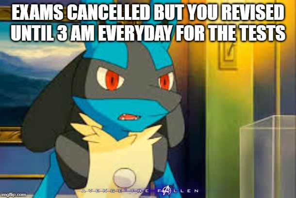 Surprised Lucario |  EXAMS CANCELLED BUT YOU REVISED UNTIL 3 AM EVERYDAY FOR THE TESTS | image tagged in surprised lucario | made w/ Imgflip meme maker