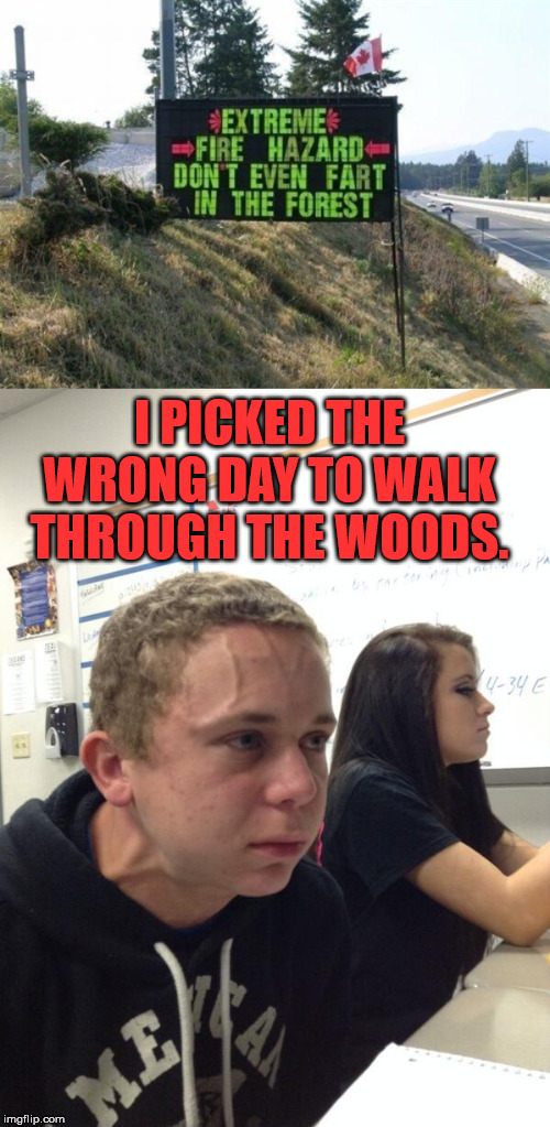 So the moral is do not eat at McDonald's or Taco Bell before walking in these woods. | I PICKED THE WRONG DAY TO WALK THROUGH THE WOODS. | image tagged in hold fart,forrest,firestarter | made w/ Imgflip meme maker