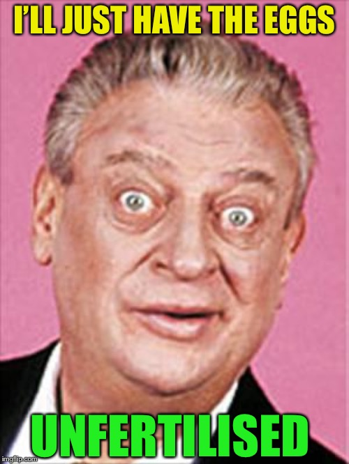 rodney dangerfield | I'LL JUST HAVE THE EGGS UNFERTILISED | image tagged in rodney dangerfield | made w/ Imgflip meme maker