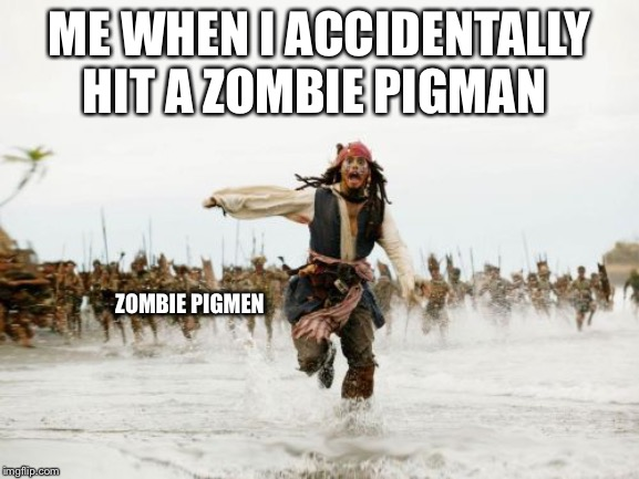 Jack Sparrow Being Chased Meme | ME WHEN I ACCIDENTALLY HIT A ZOMBIE PIGMAN ZOMBIE PIGMEN | image tagged in memes,jack sparrow being chased | made w/ Imgflip meme maker