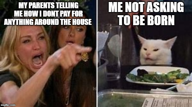 Born Without Consent | MY PARENTS TELLING ME HOW I DONT PAY FOR ANYTHING AROUND THE HOUSE ME NOT ASKING TO BE BORN | image tagged in funny,confused cat,cats,funny memes,funny cats | made w/ Imgflip meme maker