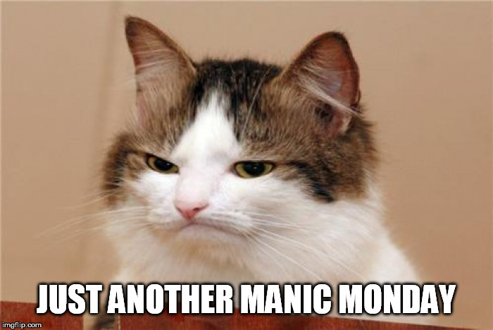 JUST ANOTHER MANIC MONDAY | made w/ Imgflip meme maker