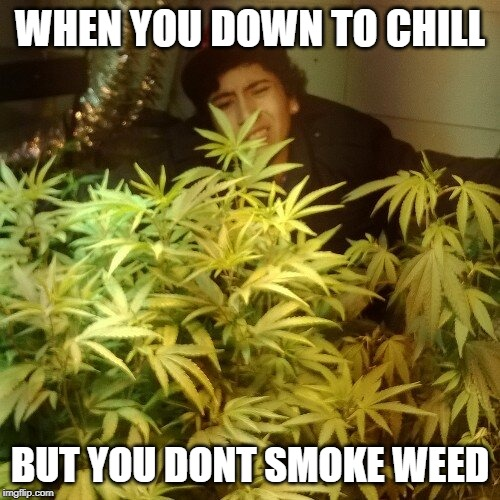 down to chill | WHEN YOU DOWN TO CHILL BUT YOU DONT SMOKE WEED | image tagged in smoke weed everyday,smoke weed,big smoke,drugs are bad,war on drugs,chillin | made w/ Imgflip meme maker