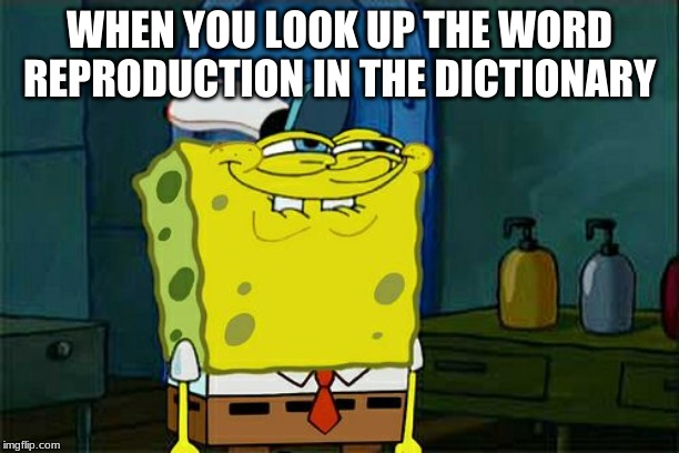 Dont You Squidward Meme | WHEN YOU LOOK UP THE WORD REPRODUCTION IN THE DICTIONARY | image tagged in memes,dont you squidward | made w/ Imgflip meme maker