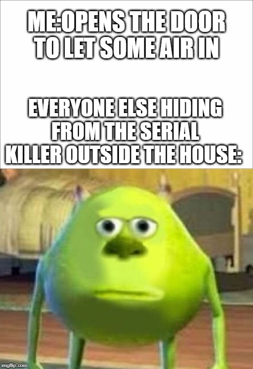 Mike Wazowski Meme | EVERYONE ELSE HIDING FROM THE SERIAL KILLER OUTSIDE THE HOUSE: ME:OPENS THE DOOR TO LET SOME AIR IN | image tagged in mike wazowski,monsters inc,sully wazowski,meme | made w/ Imgflip meme maker