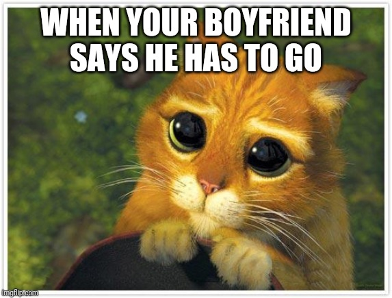 Shrek Cat | WHEN YOUR BOYFRIEND SAYS HE HAS TO GO | image tagged in memes,shrek cat | made w/ Imgflip meme maker