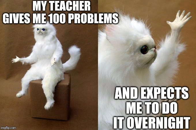 Persian Cat Room Guardian | MY TEACHER GIVES ME 100 PROBLEMS AND EXPECTS ME TO DO IT OVERNIGHT | image tagged in memes,persian cat room guardian | made w/ Imgflip meme maker