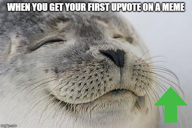 Satisfied Seal Meme |  WHEN YOU GET YOUR FIRST UPVOTE ON A MEME | image tagged in memes,satisfied seal | made w/ Imgflip meme maker
