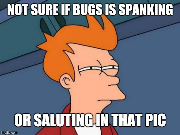 Futurama Fry Meme | NOT SURE IF BUGS IS SPANKING OR SALUTING IN THAT PIC | image tagged in memes,futurama fry | made w/ Imgflip meme maker