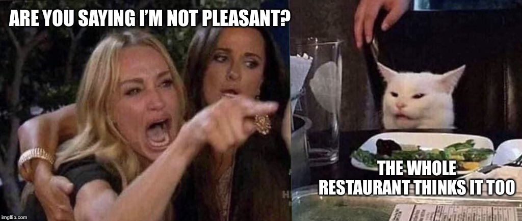 woman yelling at cat | ARE YOU SAYING I'M NOT PLEASANT? THE WHOLE RESTAURANT THINKS IT TOO | image tagged in woman yelling at cat | made w/ Imgflip meme maker