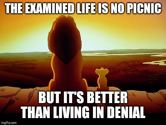Lion King | THE EXAMINED LIFE IS NO PICNIC BUT IT'S BETTER THAN LIVING IN DENIAL | image tagged in memes,lion king | made w/ Imgflip meme maker
