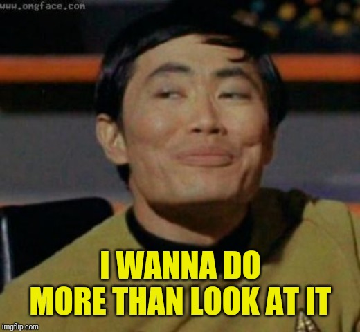 sulu | I WANNA DO MORE THAN LOOK AT IT | image tagged in sulu | made w/ Imgflip meme maker