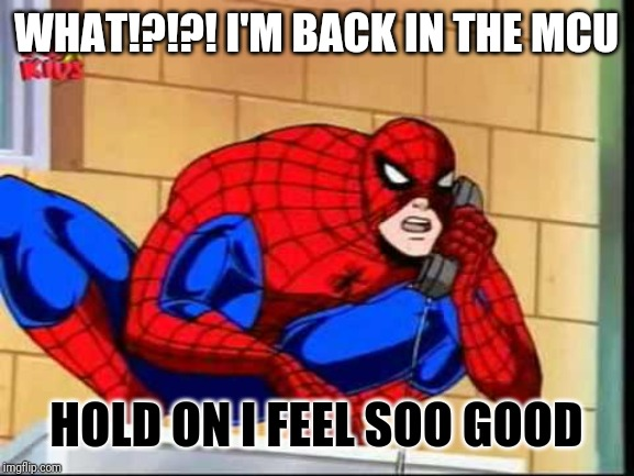 Karen Spider man meme | WHAT!?!?! I'M BACK IN THE MCU HOLD ON I FEEL SOO GOOD | image tagged in spiderman | made w/ Imgflip meme maker