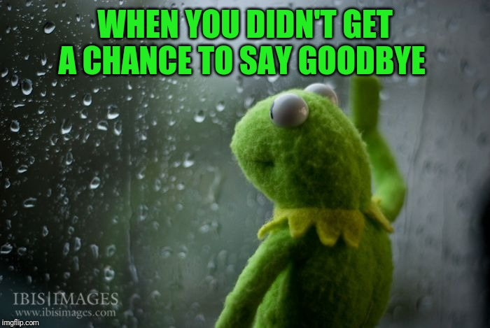 After RayCat's departure from imgflip, a stream has been set up where we can pay tribute to those who have deleted their account | WHEN YOU DIDN'T GET A CHANCE TO SAY GOODBYE | image tagged in kermit window,raycat,redredwine,readjusted,bentoutashape | made w/ Imgflip meme maker