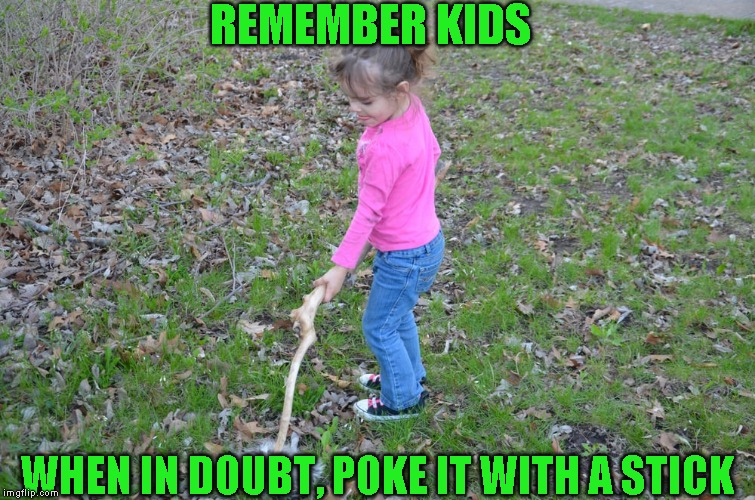 Friendly advice from you Uncle Boma | REMEMBER KIDS WHEN IN DOUBT, POKE IT WITH A STICK | image tagged in bad advice | made w/ Imgflip meme maker
