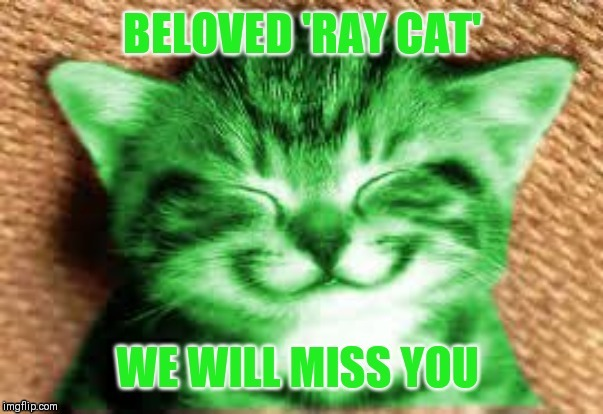 image tagged in gone but not forgotten,raycat,farewell | made w/ Imgflip meme maker