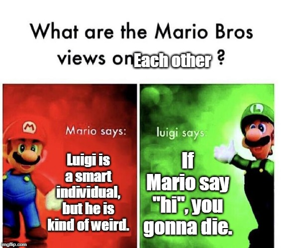 "Mario Bros Views | Luigi is a smart individual, but he is kind of weird. If Mario say ""hi"", you gonna die. Each other 