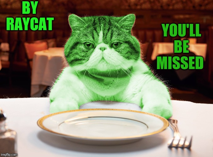 RayCat Hungry |  BY RAYCAT; YOU'LL BE MISSED | image tagged in raycat hungry | made w/ Imgflip meme maker