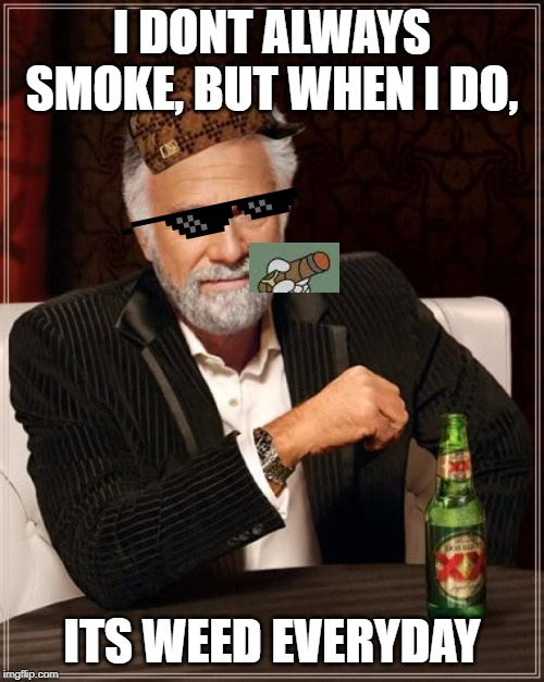 The Most Interesting Man In The World Meme | I DONT ALWAYS SMOKE, BUT WHEN I DO, ITS WEED EVERYDAY | image tagged in memes,the most interesting man in the world | made w/ Imgflip meme maker