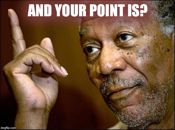 This Morgan Freeman | AND YOUR POINT IS? | image tagged in this morgan freeman | made w/ Imgflip meme maker