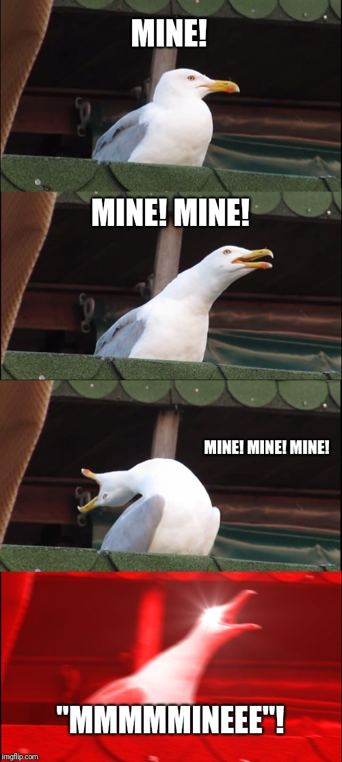 "Inhaling Seagull Meme | MINE! MINE! MINE! MINE! MINE! MINE! ""MMMMMINEEE""! 
