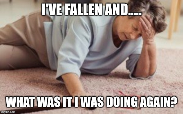 3 count | I'VE FALLEN AND..... WHAT WAS IT I WAS DOING AGAIN? | image tagged in funny memes | made w/ Imgflip meme maker