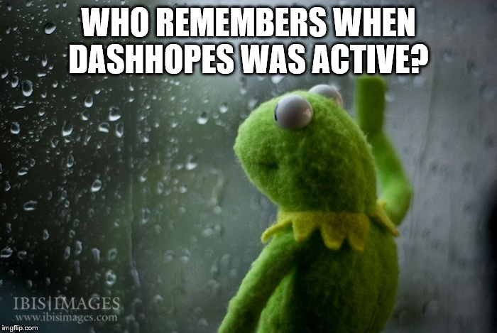 kermit window |  WHO REMEMBERS WHEN DASHHOPES WAS ACTIVE? | image tagged in kermit window | made w/ Imgflip meme maker
