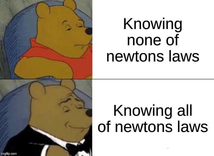 Tuxedo Winnie The Pooh Meme | Knowing none of newtons laws Knowing all of newtons laws | image tagged in memes,tuxedo winnie the pooh | made w/ Imgflip meme maker