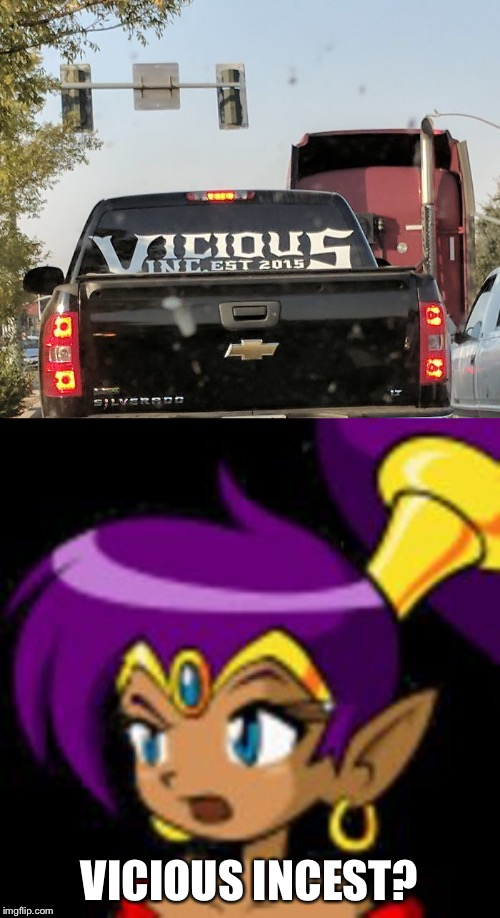 XD | VICIOUS INCEST? | image tagged in shantae questioning | made w/ Imgflip meme maker