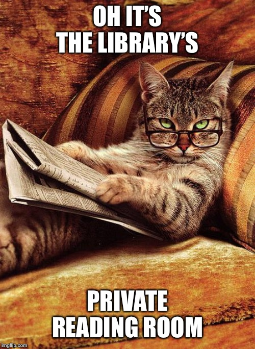 cat reading | OH IT'S THE LIBRARY'S PRIVATE READING ROOM | image tagged in cat reading | made w/ Imgflip meme maker