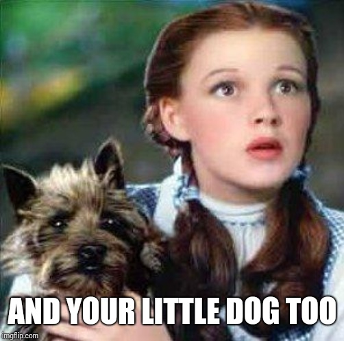 AND YOUR LITTLE DOG TOO | image tagged in dorothy | made w/ Imgflip meme maker