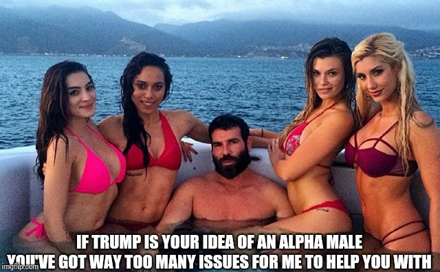IF TRUMP IS YOUR IDEA OF AN ALPHA MALE YOU'VE GOT WAY TOO MANY ISSUES FOR ME TO HELP YOU WITH | image tagged in alpha male | made w/ Imgflip meme maker