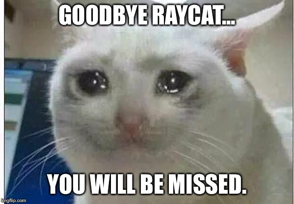 crying cat |  GOODBYE RAYCAT... YOU WILL BE MISSED. | image tagged in crying cat | made w/ Imgflip meme maker