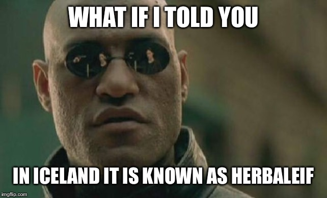 Matrix Morpheus | WHAT IF I TOLD YOU IN ICELAND IT IS KNOWN AS HERBALEIF | image tagged in memes,matrix morpheus | made w/ Imgflip meme maker