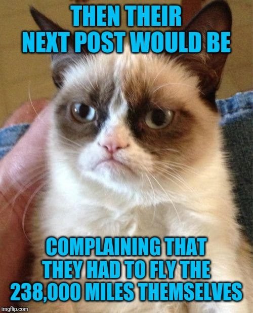 Grumpy Cat Meme | THEN THEIR NEXT POST WOULD BE COMPLAINING THAT THEY HAD TO FLY THE 238,000 MILES THEMSELVES | image tagged in memes,grumpy cat | made w/ Imgflip meme maker