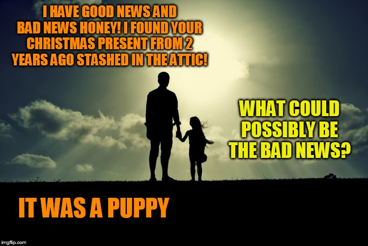 I HAVE GOOD NEWS AND BAD NEWS HONEY! I FOUND YOUR CHRISTMAS PRESENT FROM 2 YEARS AGO STASHED IN THE ATTIC! WHAT COULD POSSIBLY BE THE BAD NE | image tagged in father daughter | made w/ Imgflip meme maker