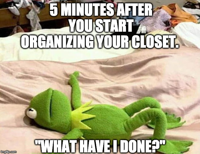 "5 MINUTES AFTER YOU START ORGANIZING YOUR CLOSET. ""WHAT HAVE I DONE?"" 