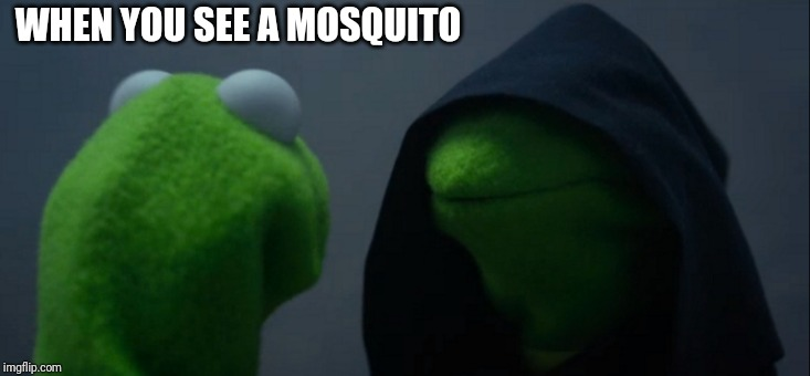 Evil Kermit Meme | WHEN YOU SEE A MOSQUITO | image tagged in memes,evil kermit | made w/ Imgflip meme maker
