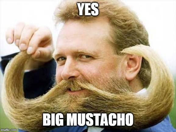 Big Mustache Mike | YES BIG MUSTACHO | image tagged in big mustache mike | made w/ Imgflip meme maker