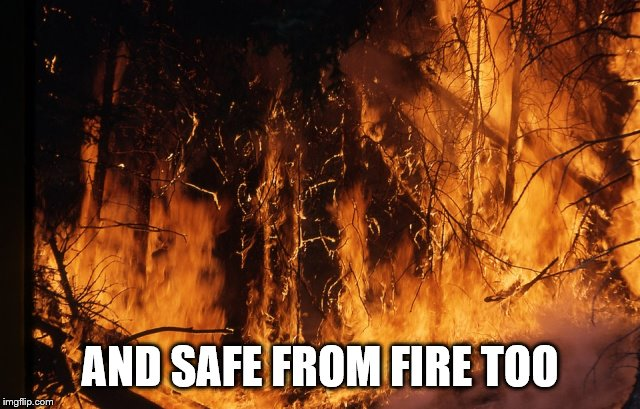 fire rainforest | AND SAFE FROM FIRE TOO | image tagged in fire rainforest | made w/ Imgflip meme maker