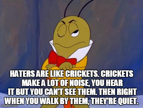 Haters | HATERS ARE LIKE CRICKETS. CRICKETS MAKE A LOT OF NOISE, YOU HEAR IT BUT YOU CAN'T SEE THEM. THEN RIGHT WHEN YOU WALK BY THEM, THEY'RE QUIET. | image tagged in haters,crickets,funny,memes | made w/ Imgflip meme maker