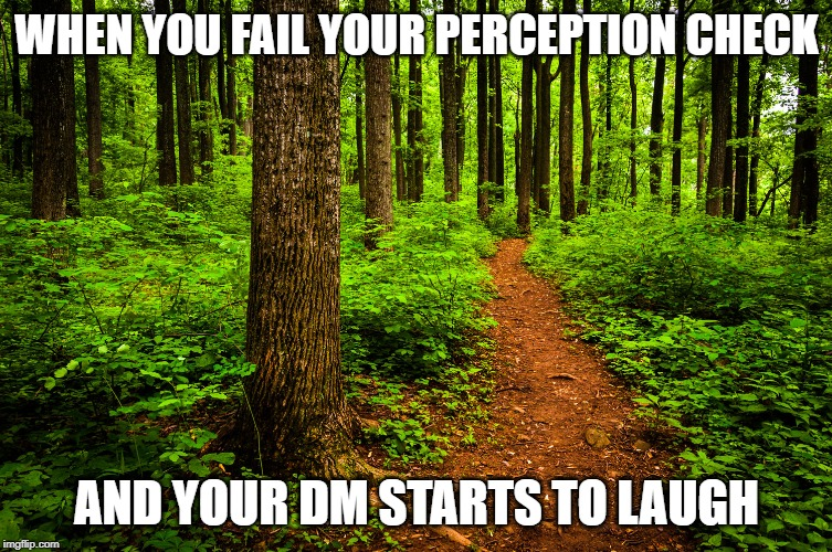 forest path | WHEN YOU FAIL YOUR PERCEPTION CHECK AND YOUR DM STARTS TO LAUGH | image tagged in forest path,dungeons and dragons,sneak attack | made w/ Imgflip meme maker