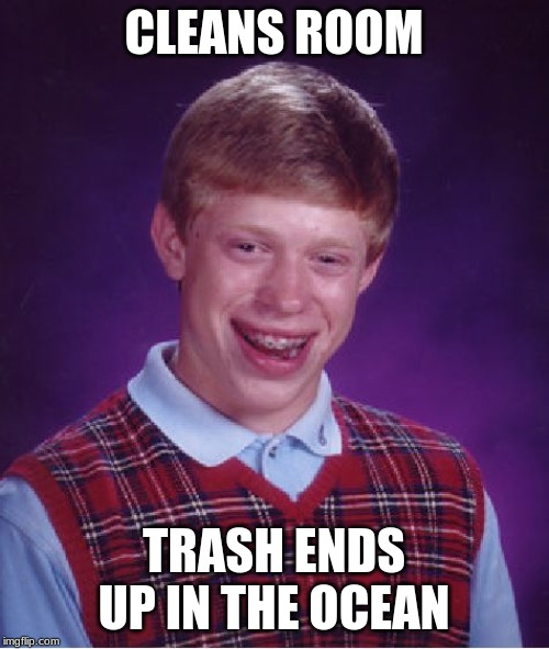 Bad Luck Brian Meme | CLEANS ROOM TRASH ENDS UP IN THE OCEAN | image tagged in memes,bad luck brian | made w/ Imgflip meme maker